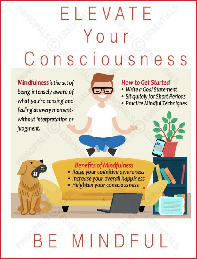 Mindful ELEVEATE Poster