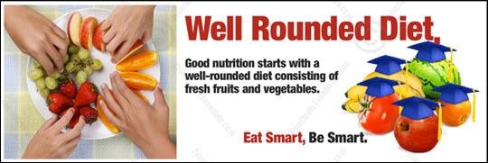 Well-Rouded Diet Banner