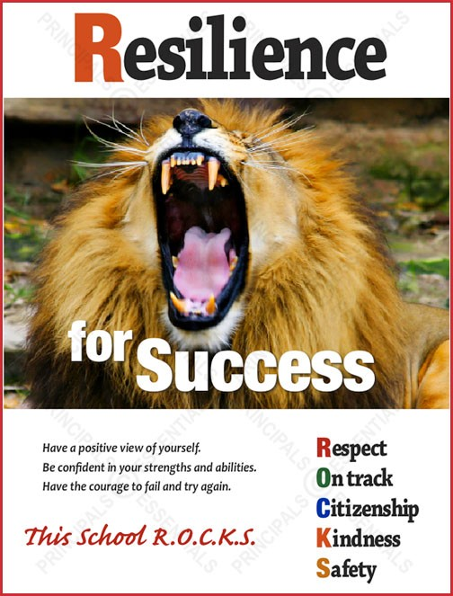 Resilience for Success Poster